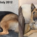 Lola_Before_After_text